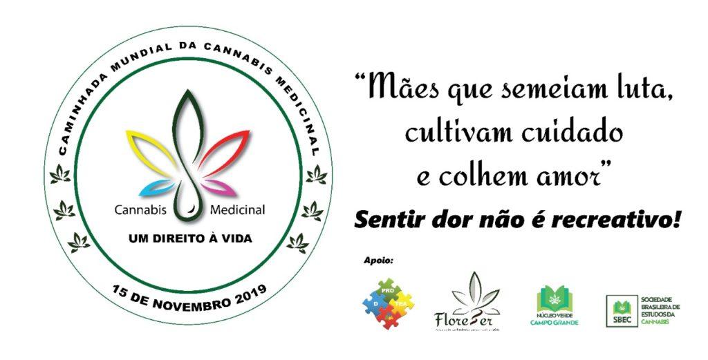 medicinal 1024x521 1º Caminhada Internacional pela Cannabis Medicinal acontece em Campo Grande
